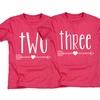 Toddler Girls' Birthday Tees