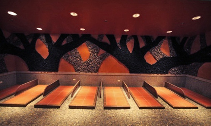 King Spa and Sauna - Niles: A Day at theKing Spa & Sauna(Up to 46% Off). Two Options Available.