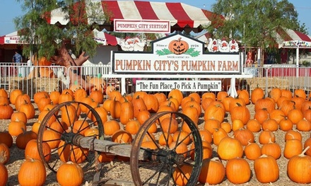 $39 for 1 Fun Pass for Rides,Petting-Zoo Admission and More at Pumpkin City's Pumpkin Farm ($80.60 Value)