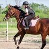 Private Horse Riding Lesson