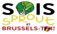 Des places pour la soirée  Sois belge et tais toi!'' version BruxellesBrussel le 1412 à 20h au Théâtre St Michel !