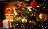 Christmas Fairy LED Lights