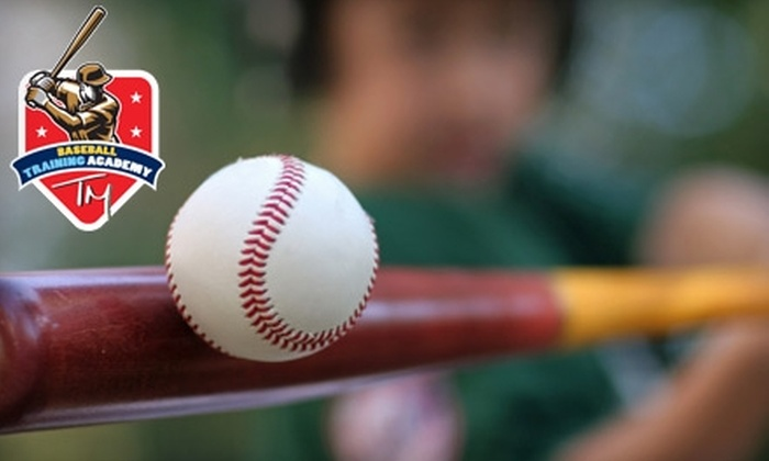 TM Baseball & Softball Academy - Westchester Village: $20 for a 30-Minute Baseball or Softball Lesson at TM Baseball & Softball Academy in the Bronx ($40 Value)