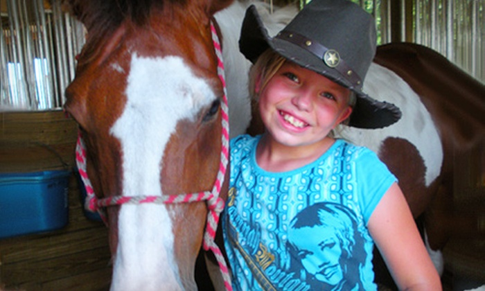 Red Fox Stables - Lithia: One Private Riding Lesson or Horseback Trail Ride for Two from Red Fox Stables in Lithia