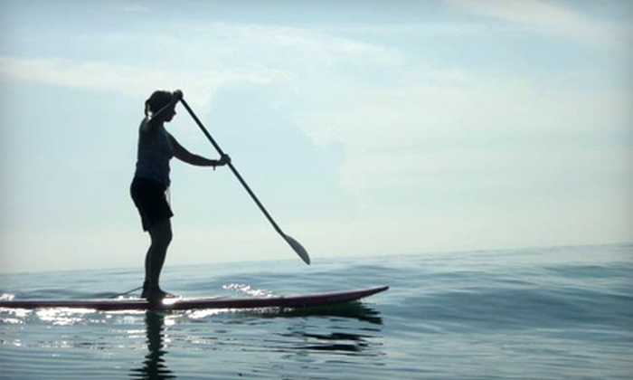 Paddleboard New Smyrna Beach - Multiple Locations: Standup-Paddleboard Tour for Two or Four from Paddleboard New Smyrna Beach