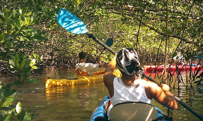Adventures in Paradise - Punta Rassa: Child or Adult Ticket to Eco-Nature Kayak Tour from Adventures in Paradise