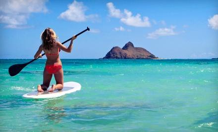 B.C. Surf & Sport - B.C. Surf & Sport in Fort Lauderdale