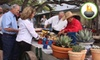 Don Strange Ranch - Boerne: $30 for One Ticket to a Family Fun Picnic on July 16 at Don Strange Ranch ($60 Value)