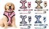 Four-Piece Pet Harness Set