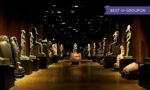 Musement: Museo Egizio - Biglietto e visita guidata ufficiale: Musement: Museo Egizio - Biglietto e visita guidata ufficiale per una persona