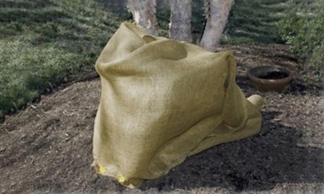 Dalen Burlap Plant and Shrub Cover cfae47d3-ce8b-47ee-b3a3-6861cbb313d1