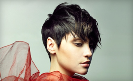 Director-Level Haircut with Shampoo, Blow-Dry, Style, and Deep-Conditioning Treatment - Shear Artistry in Indianapolis