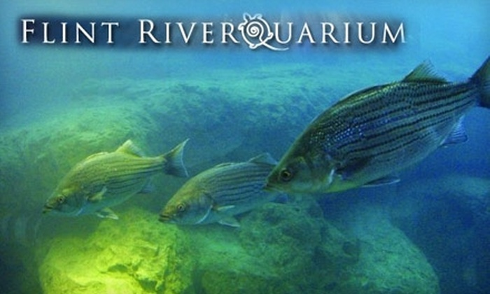 Image result for flint riverquarium