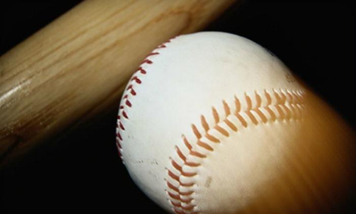 Next Level Baseball - Northeast Leon: $20 for Five Large Buckets of Batting-Cage Balls at Next Level Baseball ($40 Value)
