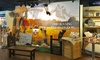 Up to 35% Off Admission to Akron Fossils & Science Center