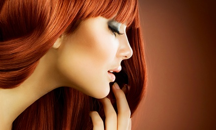 Women's Haircut with Conditioning, All-Over Color, or Partial or Full Highlights at Sivana Salon‎ (Up to 54% Off)