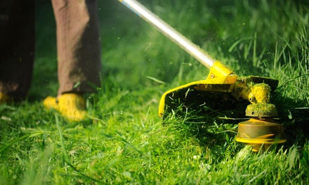 $21 for $38 Groupon — Frontier lawn and landscape