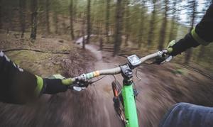 Cykloterapia: Regulacja nowego roweru (29,99 zł), przegląd podstawowy (od 39,99 zł) i więcej w Cykloterapii (do -42%)
