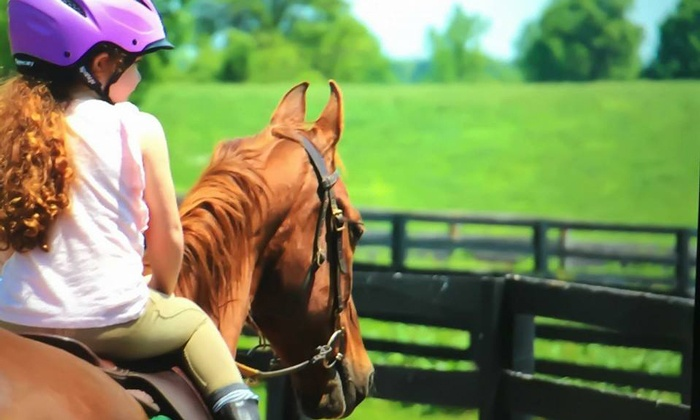 Ainsley Farm & Riding Academy - Nicholasville: Four or Six Horseback Riding Lessons at Ainsley Riding Academy (Up to 76% Off)