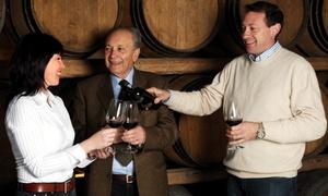 Cantine Soloperto: Degustazione di vini Primitivo e Negroamaro per 2, 4 o 6 persone da Cantine Soloperto (sconto fino a 67%)
