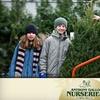 Up to 59% Off Balsam or Fraser Fir Tree