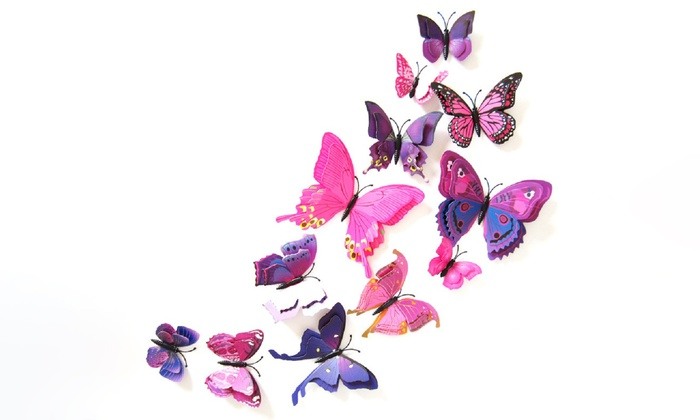 Double Wing Butterfly Wall Art Groupon