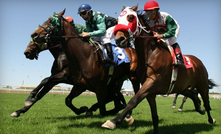 VIP Admission and Dining Package for 2 (a $50 value) - Turf Paradise in Phoenix
