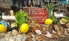 Up to 50% Off at San Antonio Seafood Market and Oyster Bar