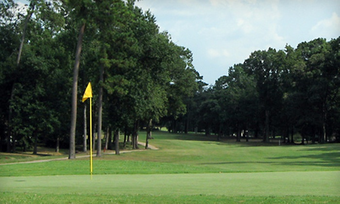 The Village Golf Club - Panorama: $99 for Foursome of Golf with Cart Rental at The Village Golf Club in Conroe