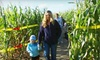 Up to 60% Off Corn-Maze Outing at Cox Fun Farm