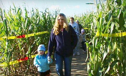 1 General Admission Ticket to the Corn Maze (up to a $10 value) - Cox Fun Farm in Wichita