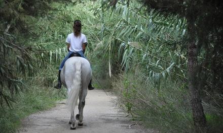 Un paseo a caballo de 45 minutos para dos personas en Centro Hípico La Mariposa (hasta 50% de descuento)