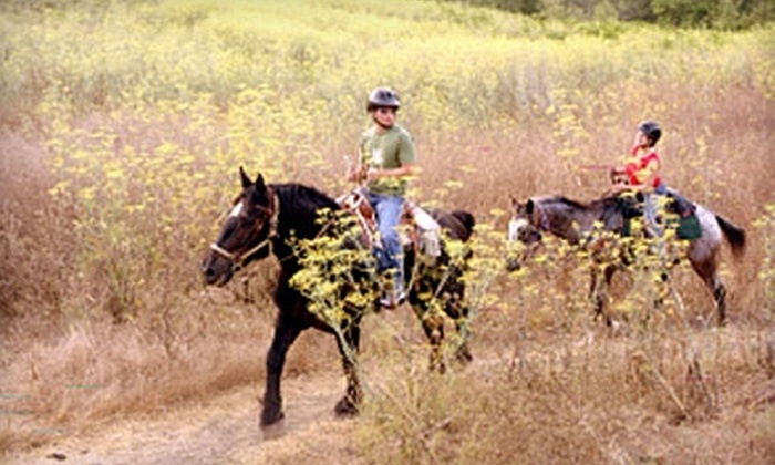 Dude's Ranch Equine Rescue Center - Acton: $55 for a Two-Hour Private Trail Ride (Up to $130 Value) or a Two-Hour Horseback-Riding Lesson ($110 Value) at Dude's Ranch Equine Rescue Center in Acton