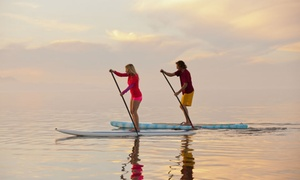 Hollywood Paddle Club: All-Day Standup Paddleboard, Double Kayak, or Single Kayak Rental from Hollywood Paddle Club (Up to 51% Off)