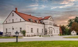 Kujawsko-pomorskie: pokój double/twin lub apartament z wyżywieniem