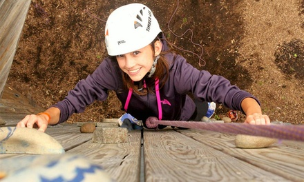 Day of Outdoor Fun for Two or Four with or Without Horseback Ride or Tower Climb at Timber-lee (Up to 49% Off)