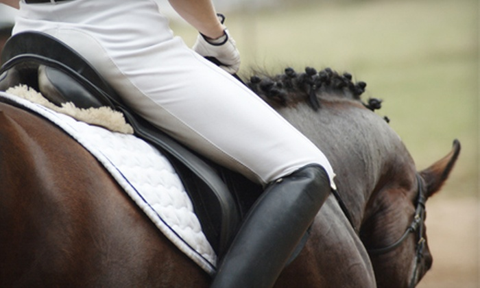 Rushlow's Arabians - Romulus: One or Three Private Horse-Riding Lessons at Rushlow's Arabians in Romulus (Up to 65% Off)