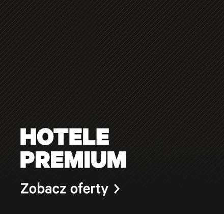 wholesale dealer ee8df 03d6e ...  occasion travel-oferty-premium ...