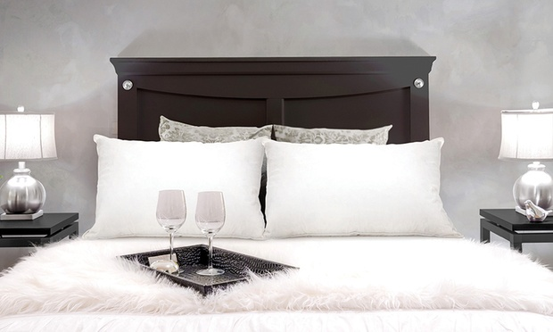 Duck or Goose Feather and Down Pillows: Two ($32) or Four ($49) (Dont Pay up to $258)