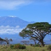 Up to 39% Off Guided Mount Kilimanjaro Hike
