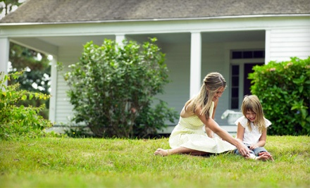 2 Fertilization-and-Weed-Control Treatments for a Lawn up to 4,000 Square Feet (an $86 value) - Spring-Green Lawn Care in