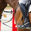 Half Off Riding Lesson at Bluegrass Polo Club
