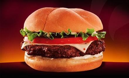 $10 Groupon to Back Yard Burgers - Back Yard Burgers in Springfield