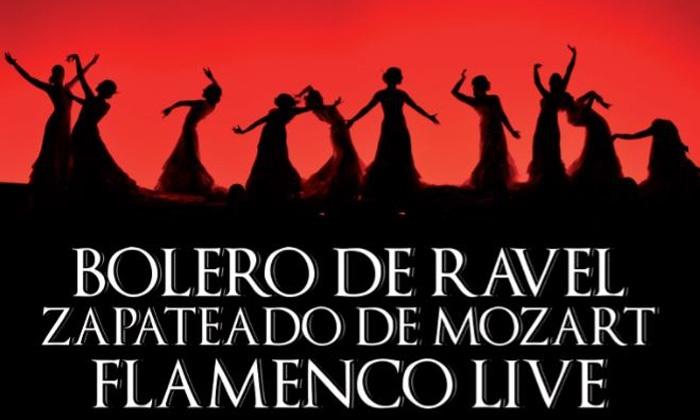 Flamenco al Teatro Brancaccio - Teatro Brancaccio: Ballet Flamenco Español il 28 gennaio al Teatro Brancaccio di Roma (sconto fino a 31%)