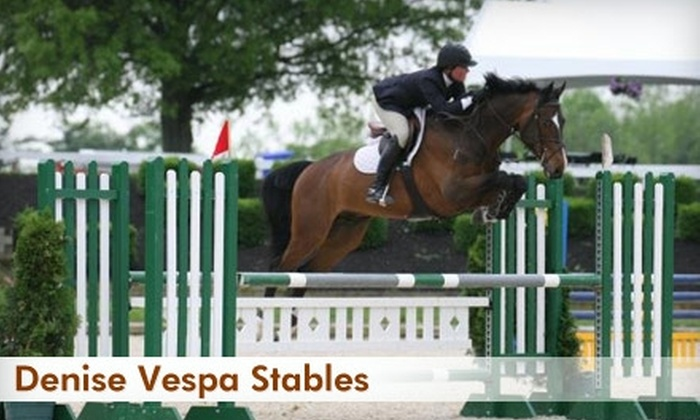 Denise Vespa Stables - Onondaga: $20 for a Half-Hour Private or Group Riding Lesson at Denise Vespa Stables ($35 Value)