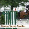 43% Off Horseback-Riding Lesson