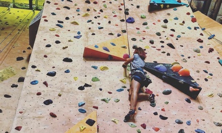 Climbing Pass & Equipment: Child $9, Adult $12 or Family $35 at Sydney Indoor Climbing Gym, Villawood Up to $70