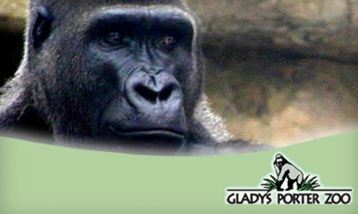 Gladys Porter Zoo in Brownsville Texas Groupon