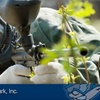 Half Off All-Day Paintball Pass