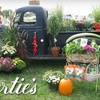 Half Off Plants and More at Gilbertie's